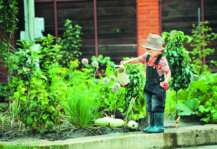 Child Friendly Gardens