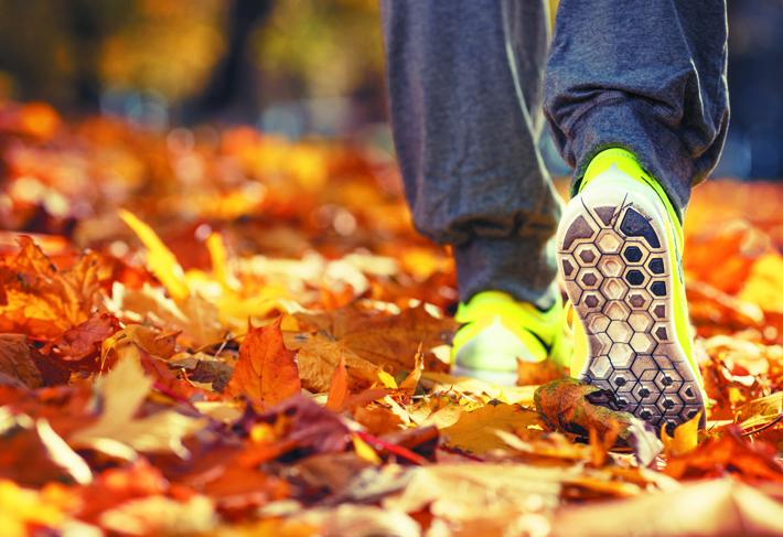 health-autumn-leaves