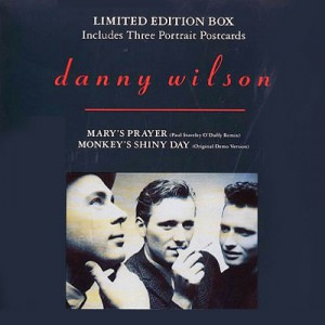 Danny Wilson Mary's Prayer vinyl